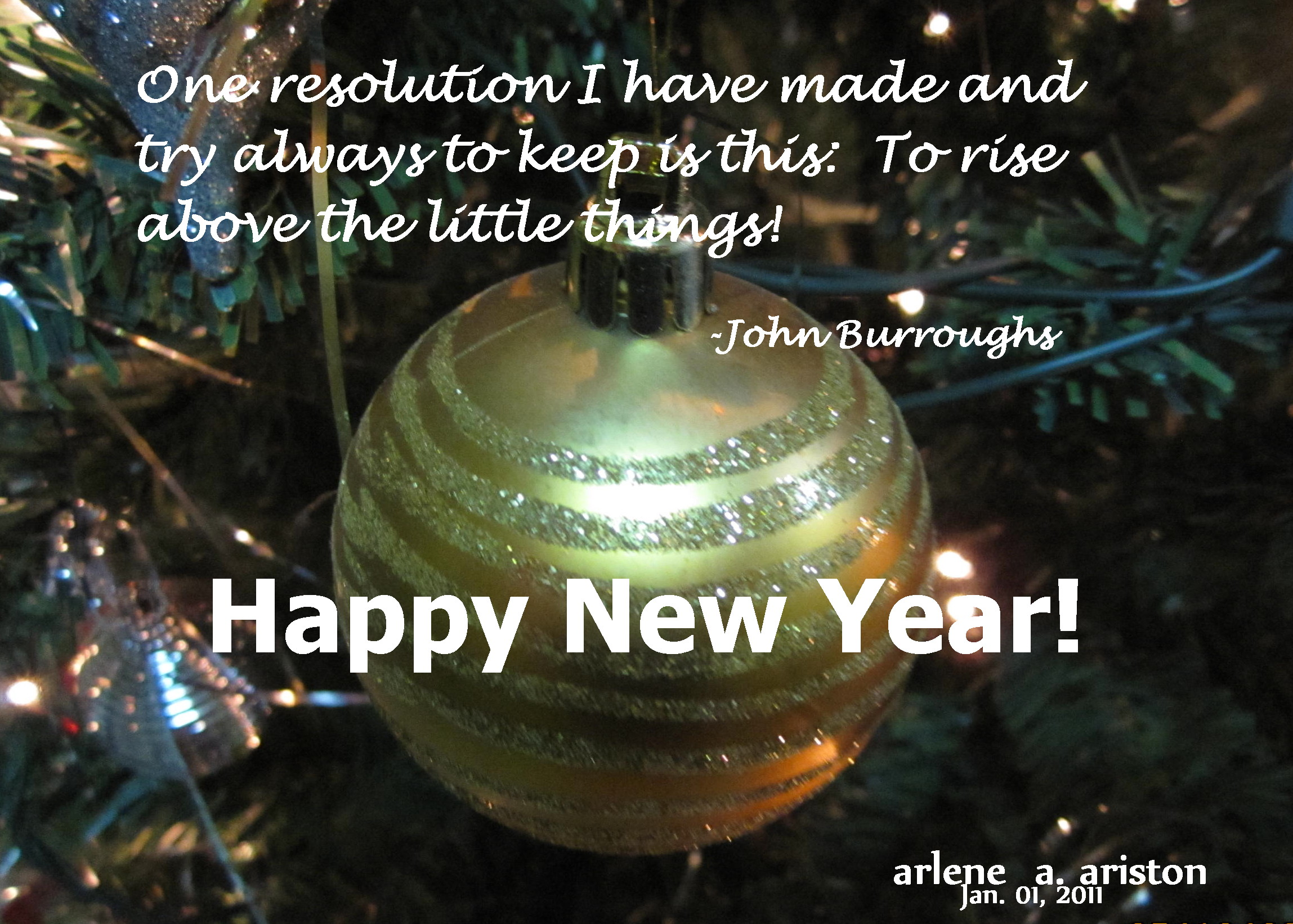 i made my new year greetings early this morning and this is what i wrote on the picture that i took last december 25