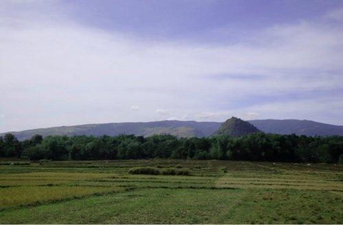 rural scene3