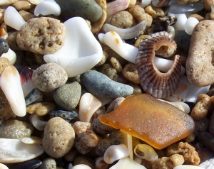 honey-amber-sea-glass-and-tiny-pebbles-and-seashells