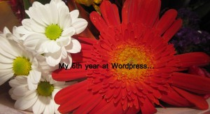 WordPress Anniv