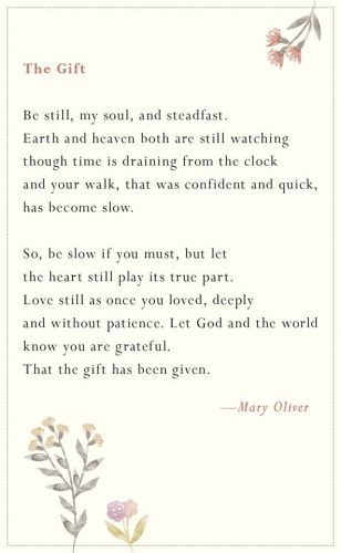 Mary Oliver Quotes | DREAMS AND ESCAPES